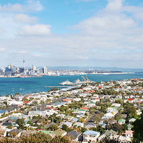 North-Shore-Auckland-img